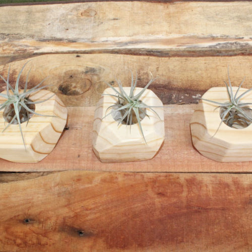 Wooden Pot Planters - Natural