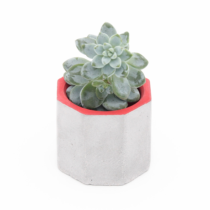 Sterretjie Concrete Planter Red with top view